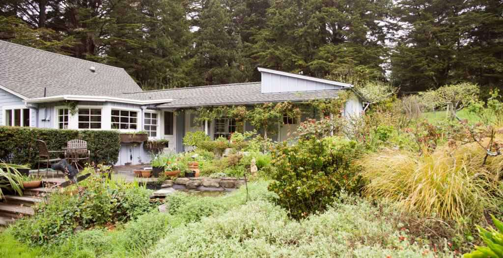 Image: Garden terrace - Hummingbird Haven of Mendocino